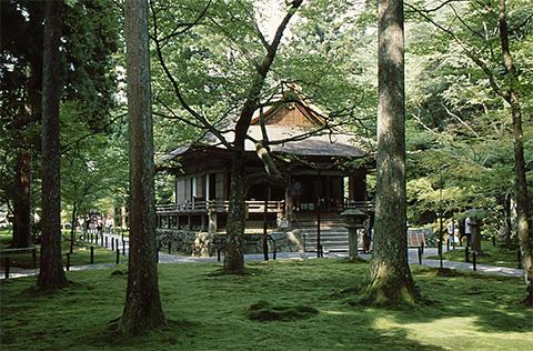 Shinden in Ohara Sanzenin, Kyoto with beautiful moss